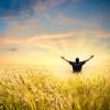 Happy Man in Wheat Field