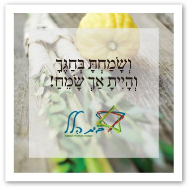 beit-hillel_sukkot
