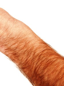 Man's hairy arm